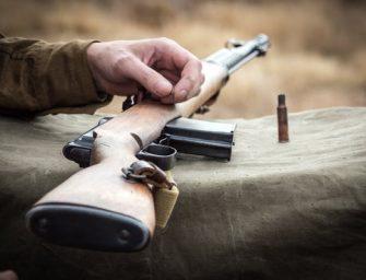 Our 4 Favorite Chiappa Rifles