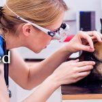 Pet Clinic Veterinary